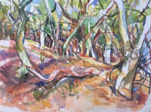 "Marin Woods, watercolor, 15""x20"""
