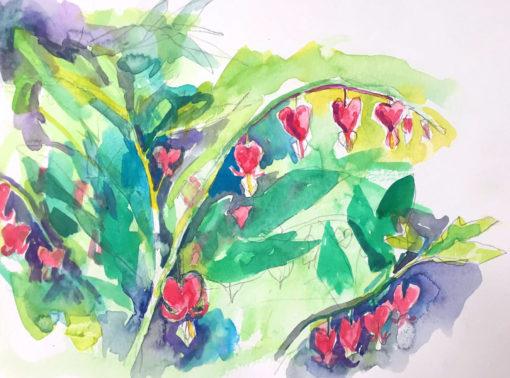 Bleeding Heart #3, watercolor, 9x11.5