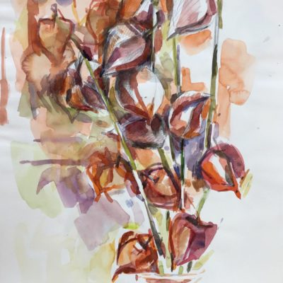 Pod bouquet, watercolor
