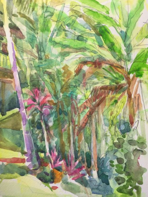 Banana Tree Grove