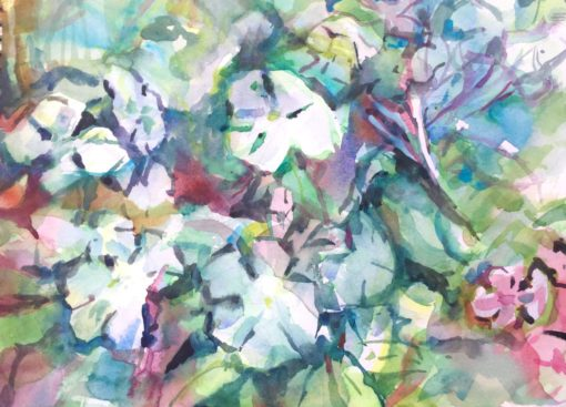 Flower Bed watercolor