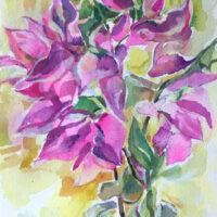 Bougainvillea watercolor
