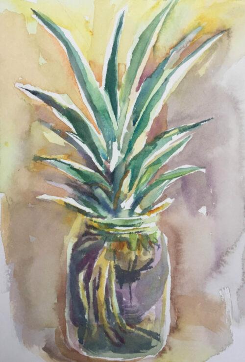Pineapple Starter watercolor