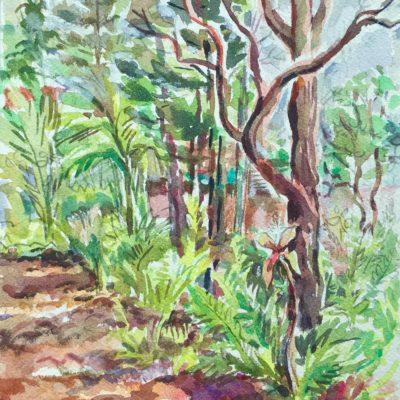 Ti Plant with Ohia watercolor