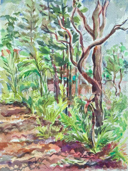 Ti Plant with Ohia watercolor