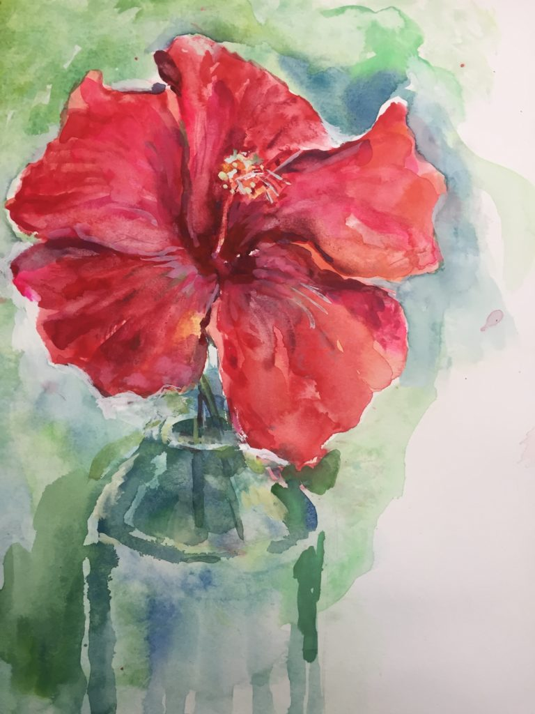 Red Hibiscus image