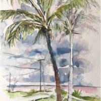Palms on Seaview Lawn