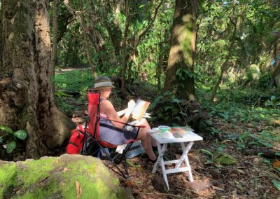 Painting in Hawaiian woods art retreat photo